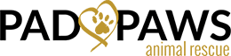 Pad Paws Rescue